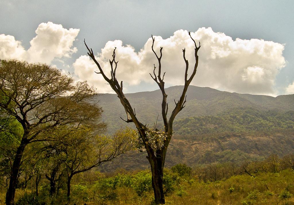 Trekking & Camping in Coimbatore