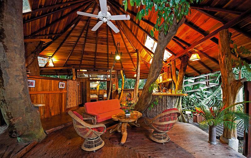Susheel Best Tree Houses In The World